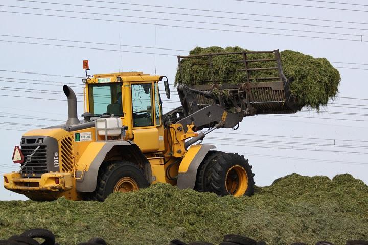 Gastfoto's van Lisa Vogelaar - Agrifoto.nl: www.agrifoto.nl/nieuws/log/5776/17382